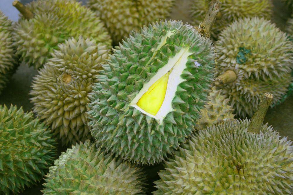 Durian Musang King © 2018 Istimewa