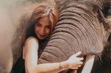 5 Potret Jessica Iskandar berpose dengan gajah, tetep sensual