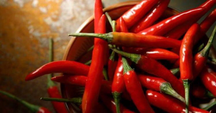 5 Keuntungan kalau kamu suka mengonsumsi makanan pedas, sehat kok!