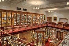 4 Koleksi mengagetkan di Museum Mutter, salah satunya otak Einstein