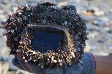 Kamera hilang 2 tahun di laut, dibuka isinya kisah wanita mengejutkan