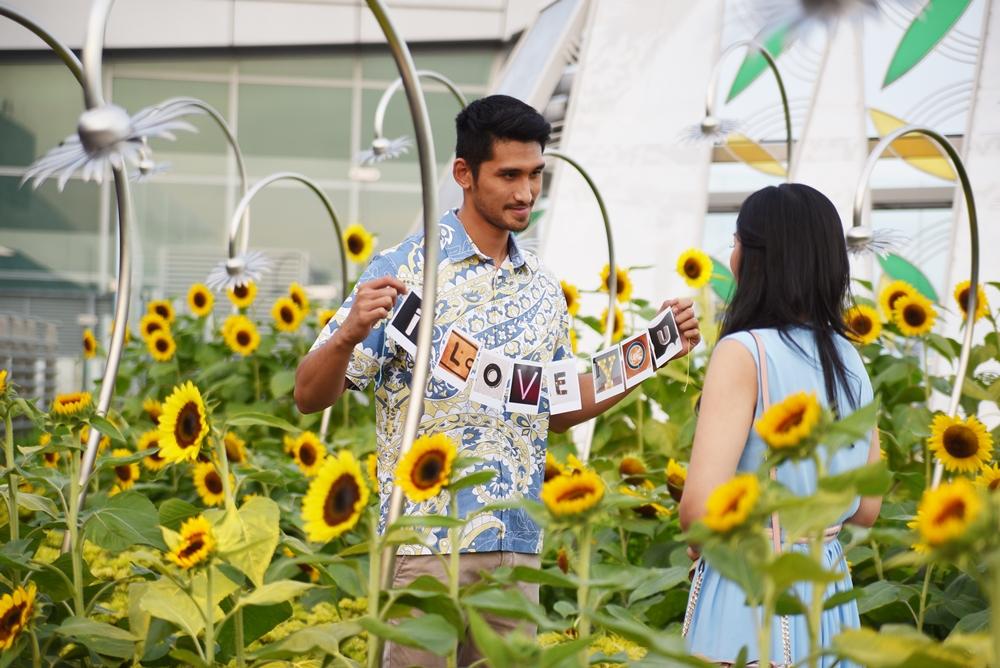 5 Spot romantis di Changi Airport, cocok dinikmati bareng pasangan