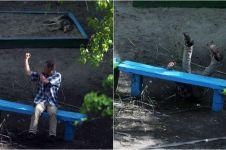 10 Tahun kegiatan di bangku taman ini dipotret, hasilnya mengejutkan