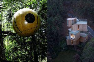 8 Rumah pohon ini punya panorama indah, ada yang bak hotel mewah