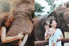 Gaya 5 seleb saat berpose dengan gajah, ekspresif banget