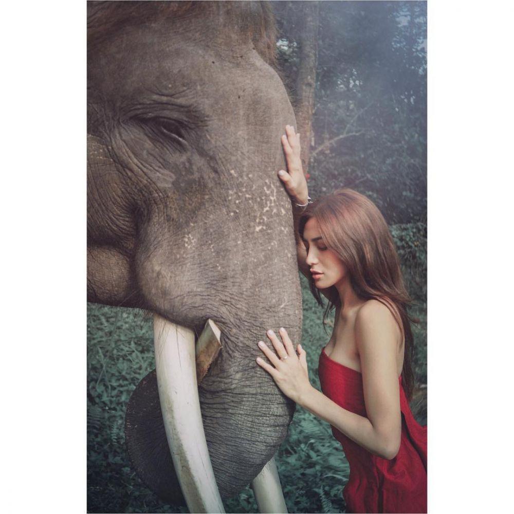 foto dengan gajah © 2018 brilio.net