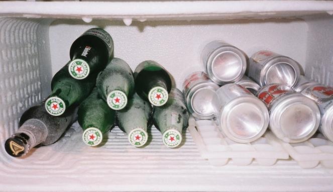 jangan simpan barang ini di freezer © goodtimes.my