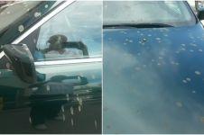 Penyebab ibu & anak alami infeksi mata saat naik mobil ini bikin miris
