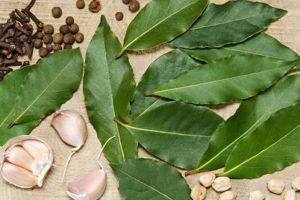7 Jenis daun yang bikin masakan Indonesia makin mantap & lezat