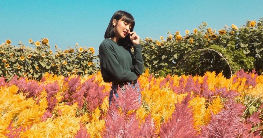 5 Kebun bunga di Jogja ini bisa bikin feed Instagrammu makin kece