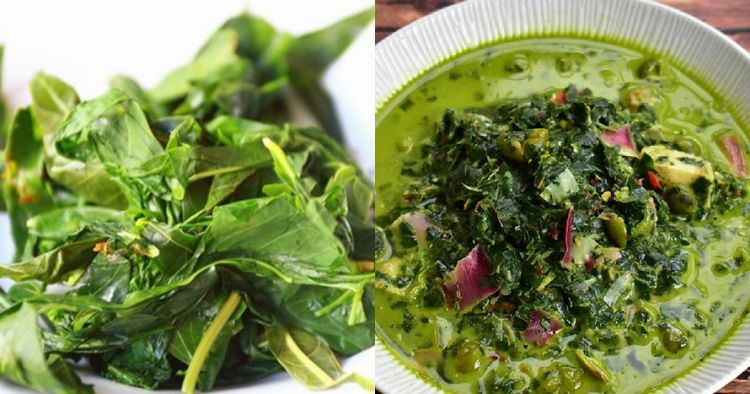 Identik dengan masakan Padang, ini 6 manfaat daun singkong bagi tubuh