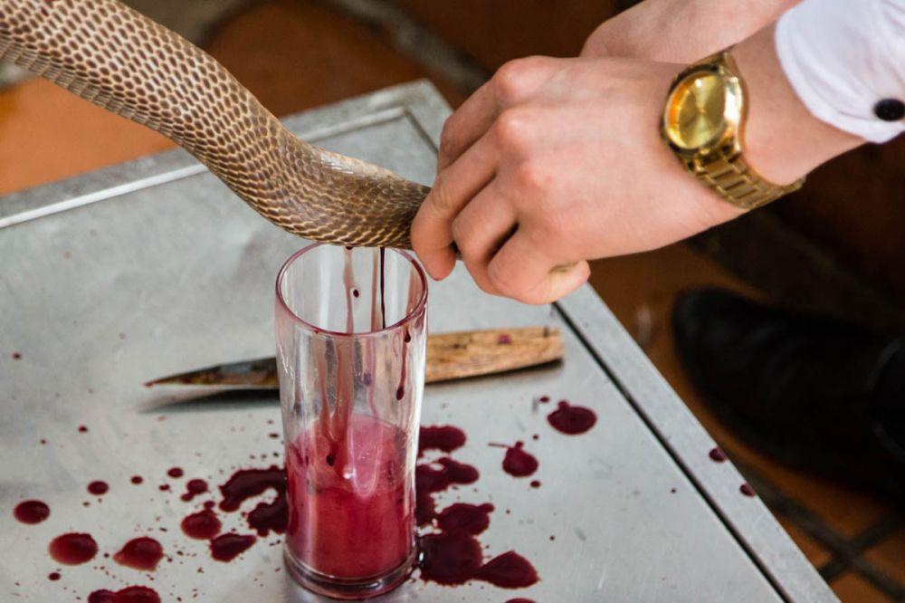 7 minuman ekstrem © 2018 Istimewa