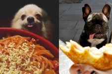 12 Ekspresi lucu anjing minta makan ini bikin senyummu terkembang