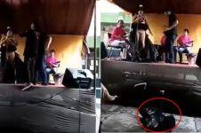 7 Momen apes jatuh dari panggung saat asyik joget, malunya selangit