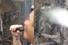 Aksi pria semburkan asap vape ke muka monyet ini tuai kecaman