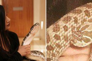 Wanita cantik ini hidup mesra dengan 16 ularnya, bikin merinding