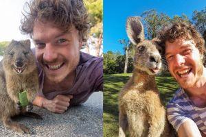 10 Ekspresi kocak hewan ketika diajak selfie ini bikin gemas