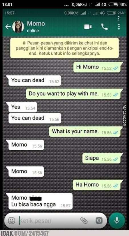 chat momo kocak © 1cak.com