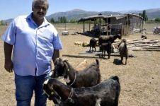 Krisis dana, klub sepak bola ini jual 18 pemain untuk beli 10 kambing