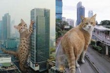 15 Foto editan kucing raksasa ini bikin gagal takut, malah ingin peluk