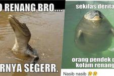 7 Meme berenang ini bikin kamu ketawa sambil ngapung