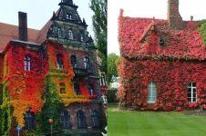 Diselimuti tanaman merambat, 8 bangunan ini malah terlihat menakjubkan