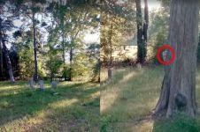 Iseng pakai Google Maps di kuburan, pria ini temukan hal tak terduga