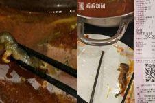 Gara-gara heboh berita tikus di sup, restoran ini merugi Rp 2,8 T