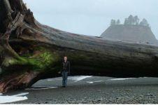 Terdampar di pinggir pantai, 10 benda temuan ini sungguh mengejutkan