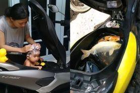 5 Kelakuan absurd orang memanfaatkan bagasi motor ini gereget abis