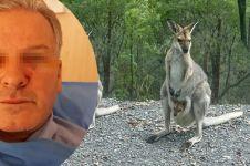 Niat tolong kanguru sekarat, nasib sopir bus ini berakhir apes