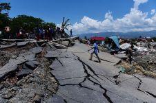 9 Universitas ini tawarkan kuliah sementara untuk korban Palu-Donggala