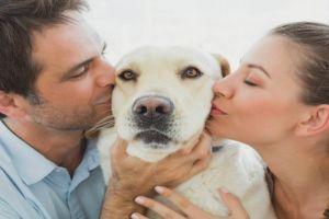 7 Fakta tentang anjing yang tak kamu sadari, punya hidung ganda