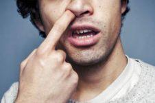 Penelitian terbaru, mengupil ternyata bisa sebabkan infeksi paru-paru