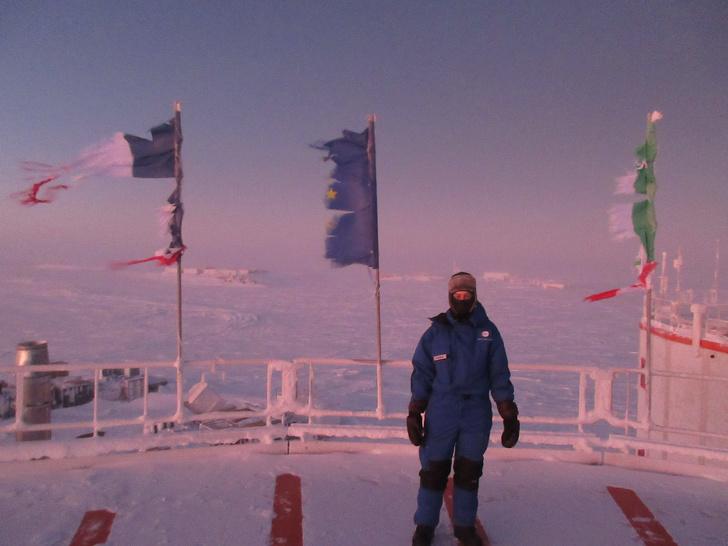kehidupan antartika brightside.me