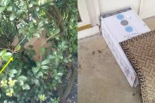 10 Cara kurir antarkan barang saat orang tidak di rumah ini bikin kzl