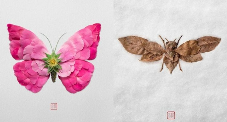 10 Potret Karya Seni Dari Potongan Tumbuhan Kreatifnya Nggak Nan