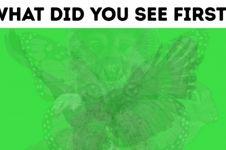 Binatang pertama yang kamu lihat ini bisa ungkap karakter aslimu