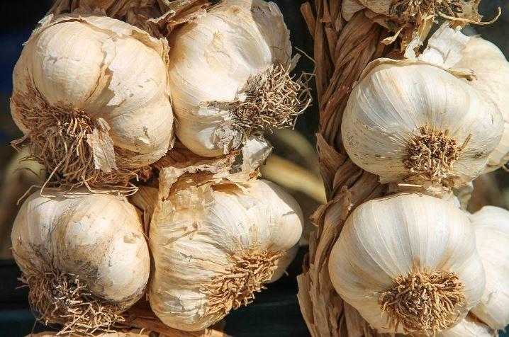 20 Manfaat bawang putih bagi kesehatan, bisa cegah kanker