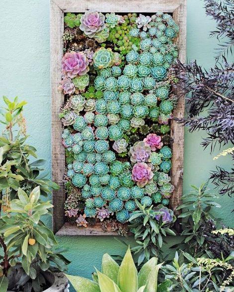 sukulen dan kaktus ©Instagram/@fairyblooms