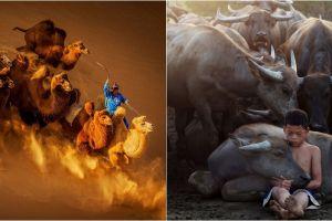 20 Foto pemenang kontes foto Siena ini gambarkan sisi lain dunia