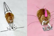 15 Foto lucu kreasi gambar dari kucing duduk ini hasilnya kocak