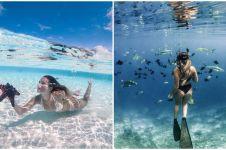 30 Pemandangan alam bawah laut Raja Ampat, indah tak terkalahkan