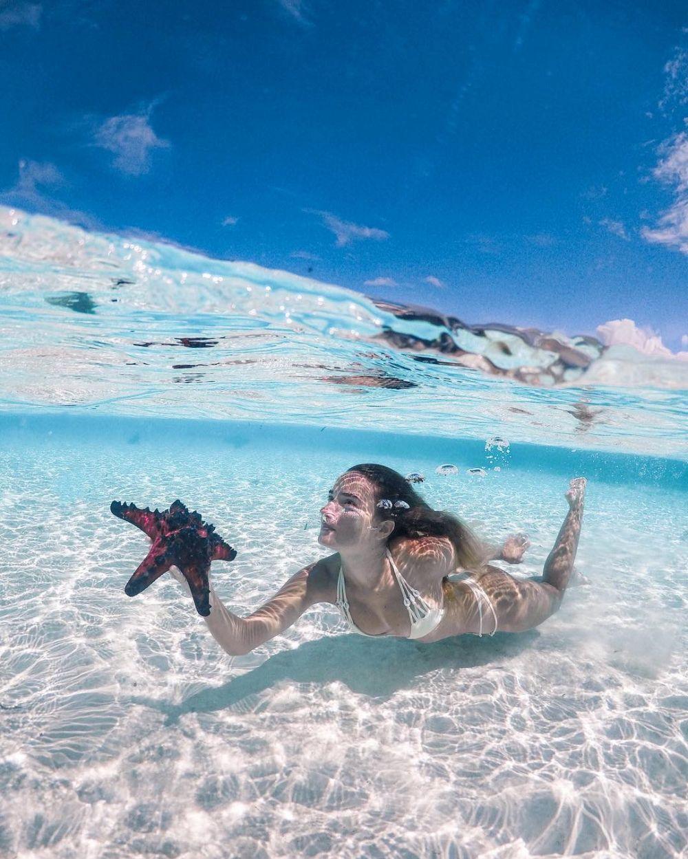 30 Pemandangan Alam Bawah Laut Raja Ampat Indah Tak Terkalahkan
