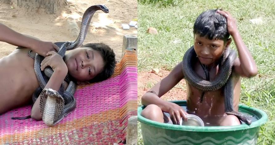 10 Potret bocah 7 tahun dengan ular berbisa, sering mandi bareng