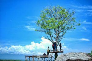 5 Tempat wisata di Madiun yang instagramable untuk liburan akhir tahun