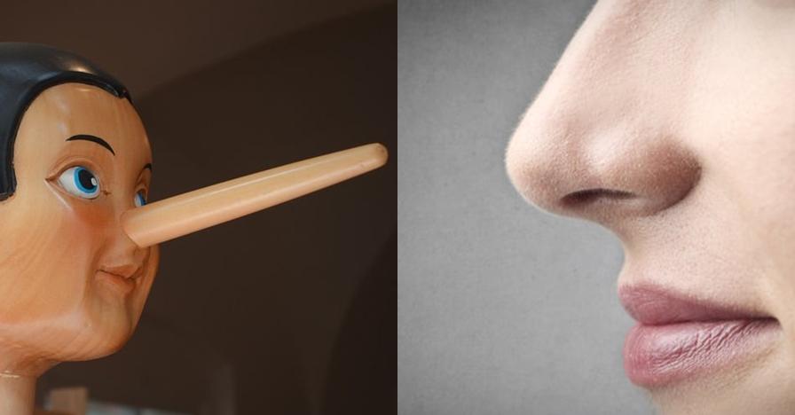 Hidung manusia ternyata menyusut saat berbohong, ini penjelasannya
