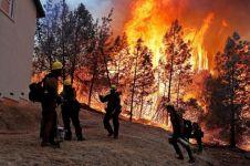 9 Foto satelit kondisi California sebelum dan sesudah kebakaran