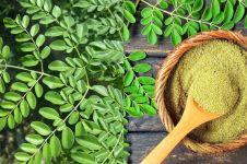 13 Manfaat daun kelor bagi kesehatan & kecantikan, teruji ilmiah