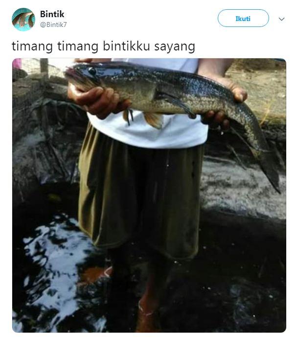 bintik ikan gabus © 2018 brilio.net berbagai sumber